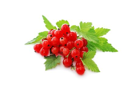 red currant: Currant berries. Red currants on a white background.