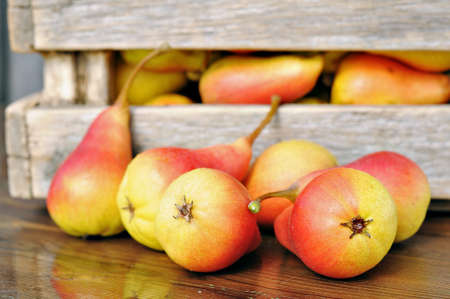 Red pear on the table  Harvest ripe pears  Stock Photo - 13640139