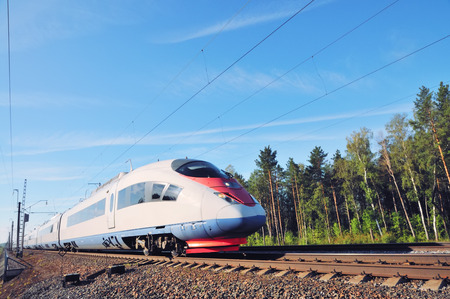 bullet train: High-speed train peregrine.  Train in the middle of the forest. High-speed traffic, Russia
