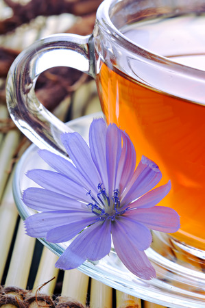 Chicory flowers and tea from chicory. Stock Photo