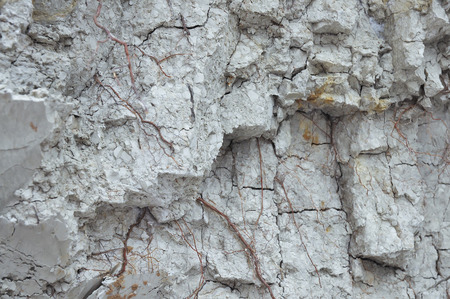 Wall of white clay. Clay pit. Stock Photo