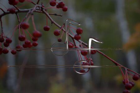 voluminous: voluminous notes on a background of autumn
