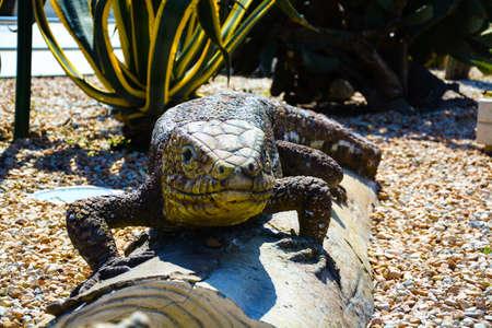 statue of a huge prehistoric lizard, looks frightening