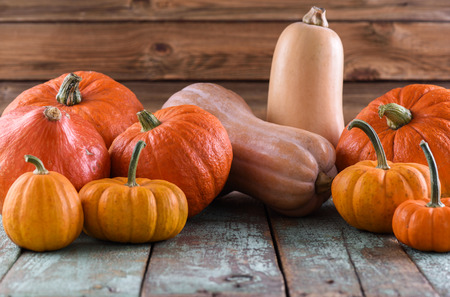 Bright orange pumpkins and butternut squashes for Thanksgiving and Halloween on blue wooden table copyspace closeup Stock Photo