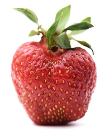 Non-ideal ripe organic strawberry isolated closeup