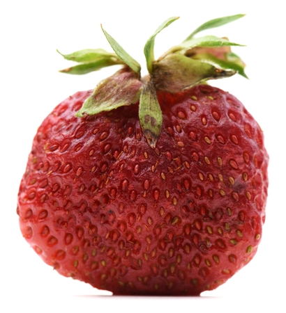 Non-ideal organic red ripe sweet strawberry isolated closeup