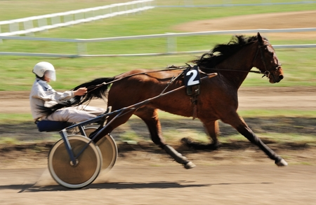 Orel, Russia - April 30, 2017: Harness racing. Sorrel racing horse trotting fast with a sulky motion blur Editorial