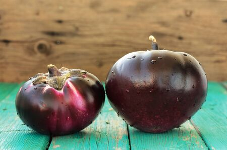 Heirloom fresh organic eggplants on turquoise background copyspace
