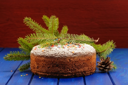 Homemade chocolate fruit christmas cake with green fur tree branch and cone copyspace Stock Photo