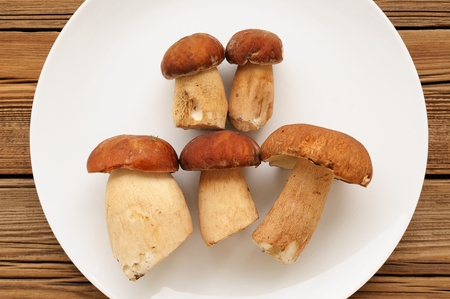 Wild porcini mushrooms lying on white plate on wooden background top view