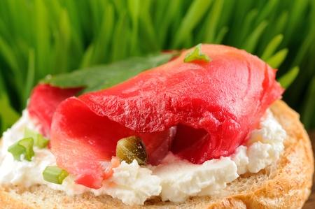 Sándwich con gravlax, perejil, cebolla de verdeo, alcaparras y queso crema en macro de primer plano de fondo de hierba de primavera