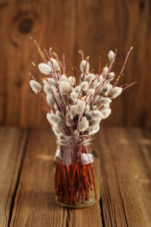 Bouquet of pussy willow twigs in glass jar on wooden background vertical
