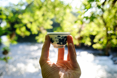Small chinese porcelain cup in front of water and green leaves sinlight bokeh background Stock Photo