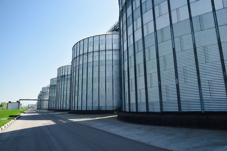 High tech industrial buildings of modern plant for storage and processing crops. Industrial landscape. Big granaries in sunny summer day  copyspace