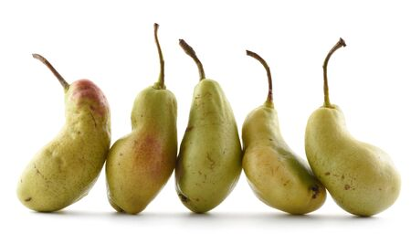 Ugly produce concept. Strangely shaped organic pears in row isolated on white background closeup Banco de Imagens