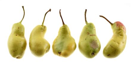 Ugly organic fruits. Deformed green pears in row isolated on white background without shodow