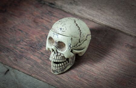 scarry: Skull on wood background.