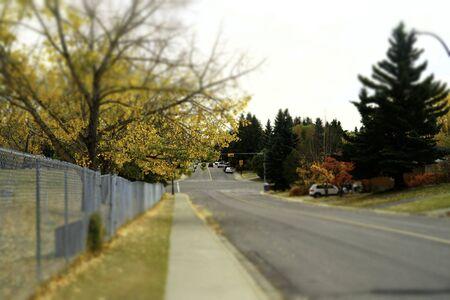 Autumn fall street view 版權商用圖片