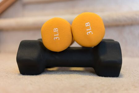 exercise Dumbbells for home gym