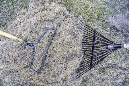 Garden rake and pile of dead grass from lawn after winter