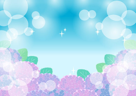 brightness: Hydrangeas and brightness