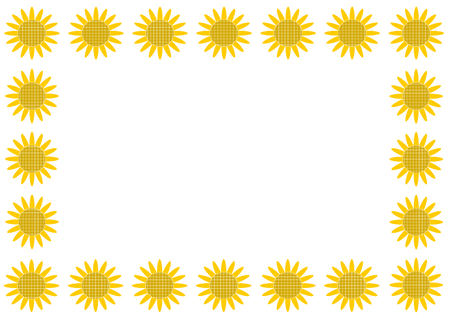 sunflower field: Frame of sunflower