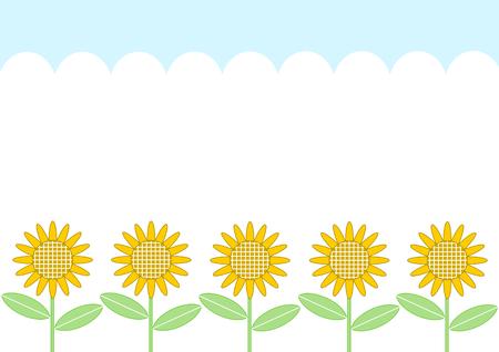sunflower field: sunflower and blue sky summer image