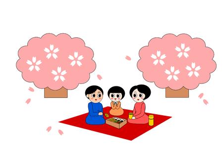 pareja comiendo: Picnic de Hanami Foto de archivo