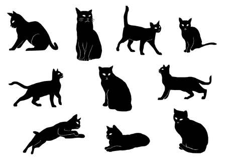 Illustration silhouette of the cat