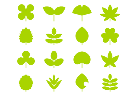 Icon of leaves