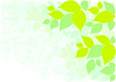 Illustration of leaves Illustration