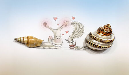 Drawn in Pencil Snail Crawled Out of Real Seashells. Love of Snails. photo