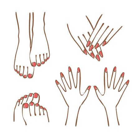 Hand and foot illustration set.The nails are given manicure and pedicure.  イラスト・ベクター素材