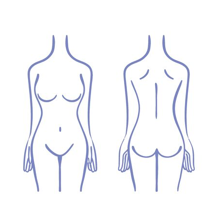 Illustration of female torso Vectores
