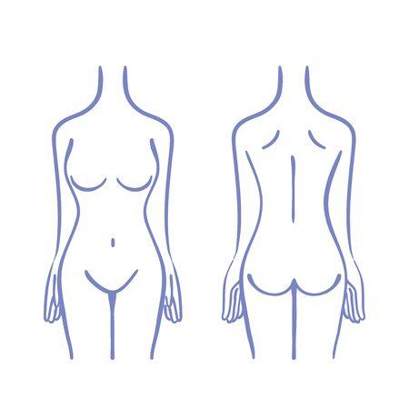 Illustration of female torso Illustration