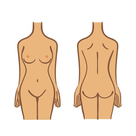 Illustration of female torso