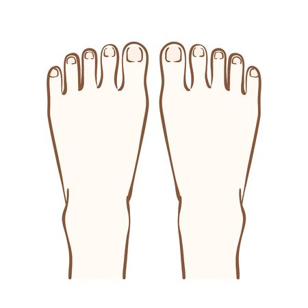 Illustration of the instep of both feet