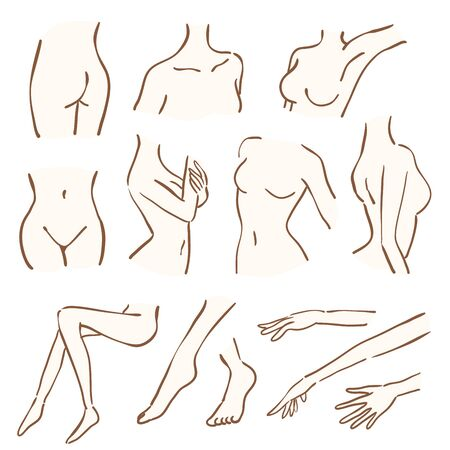 A part of a woman 's body. This is a hand-drawn illustration
