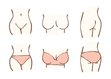 Une partie du corps d'une femme. Ceci est une illustration dessinée à la main