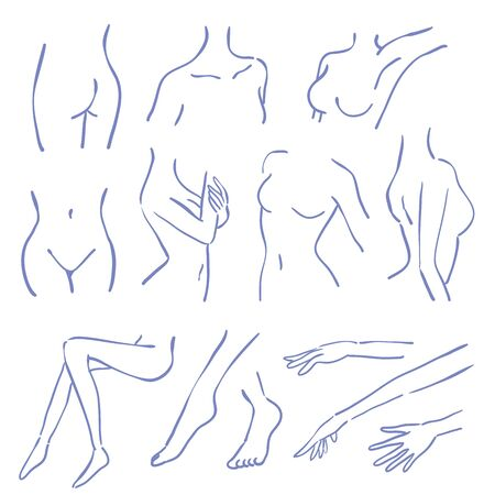 A part of a woman s body. This is a hand-drawn illustration Illustration
