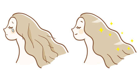 Before and after hair care 矢量图像