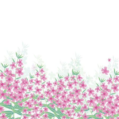 Vector Illustration. Poster with angelonia. Background with modern home flowers and with place for text