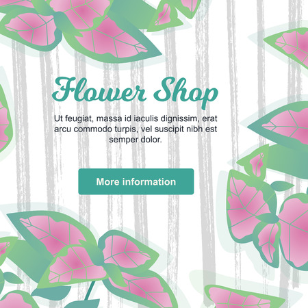 Vector Illustration.  Flower Shop Poster with coleus. Background with modern home flowers and with place for text on wood texture and with button More Information