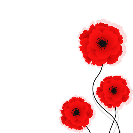 Nature background with red poppies flowers. Vector illustration. Can be used for textile, wallpapers, prints and web design. Vector illustration