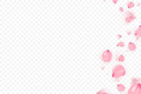 Rosa Sakura fallende Blütenblätter Vektor Hintergrund. 3D romantische Illustration. Transparentes Banner mit Sakura. Liebeskarte Standard-Bild