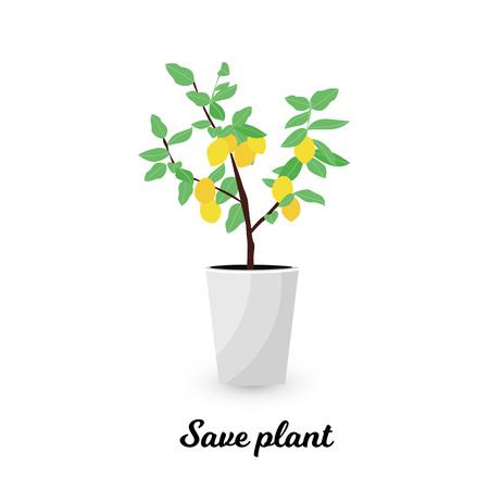 Vector Illustration. Plant in pot. Lemon tree. Flat style. Save plant