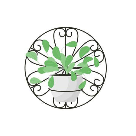 Home plant for style design window or house interior. Hanger with green   modern home flowers. Elements for concept hygge room. Isolated garden decoration, vector illustration Иллюстрация