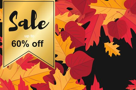 Season sale banner with fall autumn leaf concept. Template holiday banner for season sale, thanksgiving poster. Background for texture, wallpaper with red maple leaves. Illustration