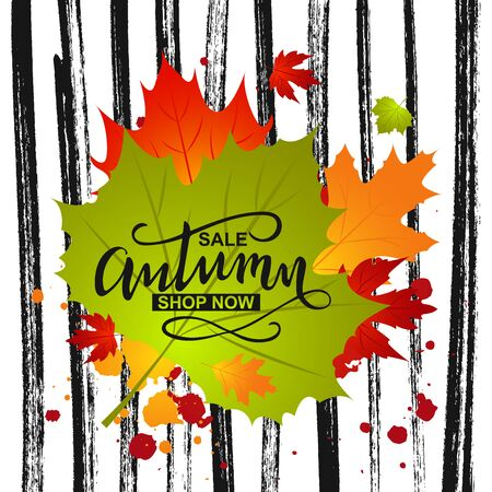 Autumn sale background with fall leaf and ink paint strip. Banner for offer, ad, thanksgiving poster. Template design. Vector Illustration