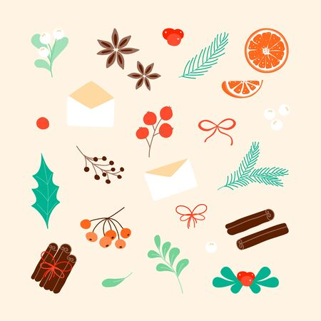 Isolated Christmas set elements. Simple Christmas tree branch, orange slice, cinnamon, leaf, fruit, anise star in scandinavian style.